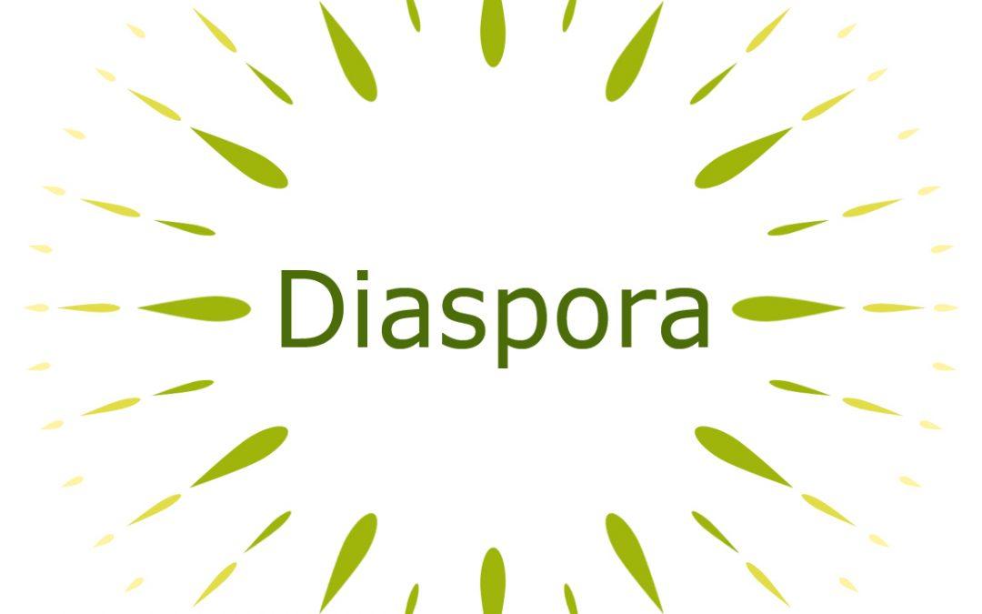 """Emitovana VII emisija za dijasporu u okviru projekta """"Dijaspora za razvoj"""""""